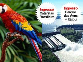 Pacote Cat. Brasileira + Itaipu + Parque das Aves