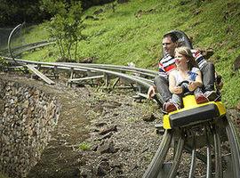 Trenó - Alpen Park