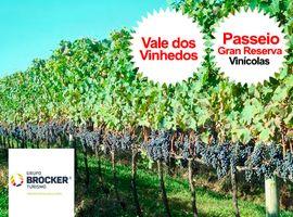 Tour Gran Reserva + Mini Curso em Vinhos