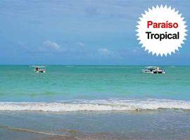 Passeio Tour Hibiscus Alagoas Inclui Day Use Beach Club