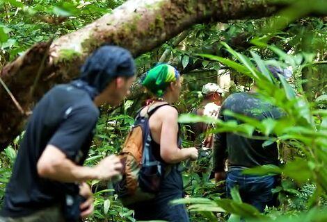 Passeio de Sobrevivência na Selva