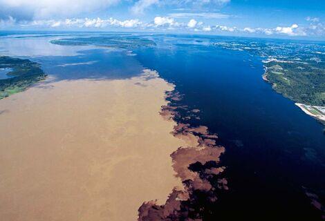 Combo Amazônico Encontro das Águas e Boto cor-de-rosa