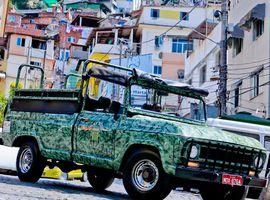 Passeio Favela e Floresta - cultura, natureza e caminhada
